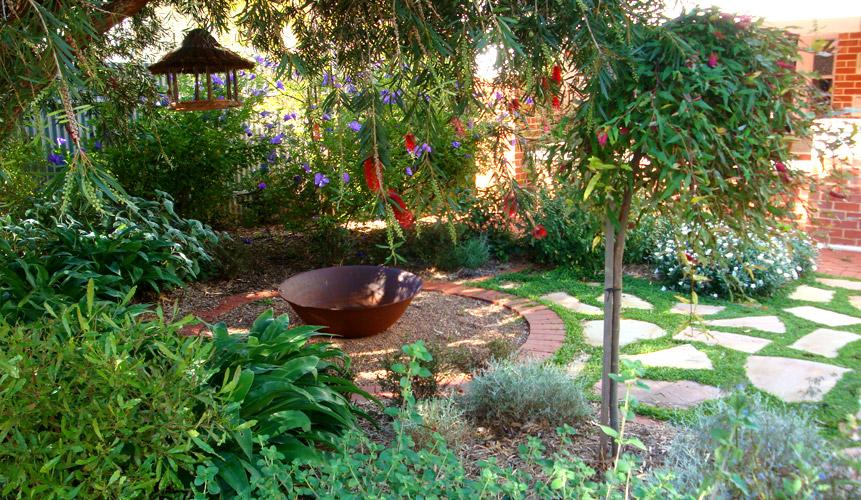 7 beautiful gardens ideas the home touches for Australian native garden design ideas